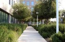 Kp sc healing garden cv