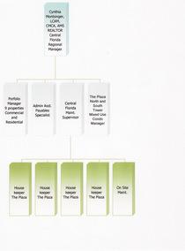 Organizational chart vesta cv