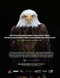 Eagleconcept cv