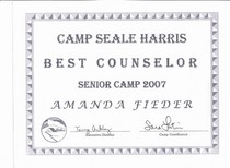 Best counselor award 20074 cv