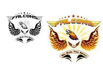 Falcon cv
