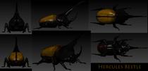 Hercules beetle cv