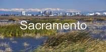 Sacramento ca skyline cv