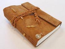 Journal cv