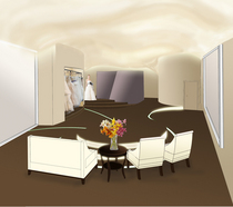 Vera wang main area perspective cv