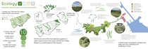Ecology lowres  cv