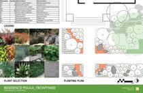 Pisula frontyard master 2 cv