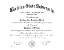Bs chemistry diploma cv