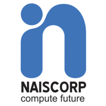Naiscorp logo only  small 1 cv