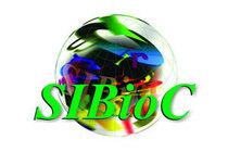 Sibioc cv