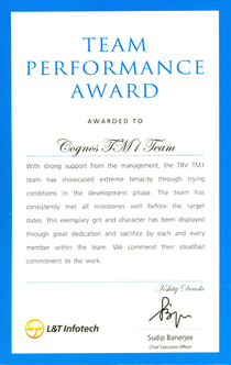 Team performance award cv
