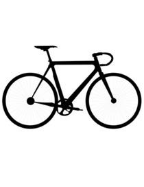 Bike cv