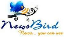 Newsbirdnewsmallm cv