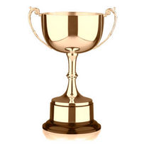 Awards 1893069018 cv