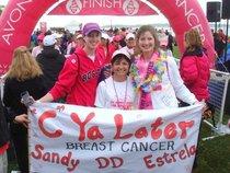 Avon breast cancer walk 001 cv