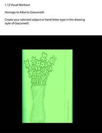 Flowers visual  cv