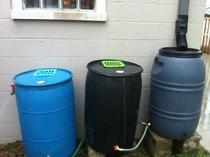 Daisy chained rain barrels cv