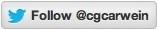 Twitter button icon cv