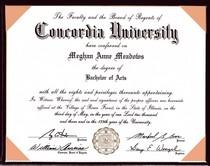 Concordia degree cv