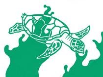 Sea turtle cv
