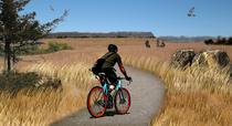 1 prairie trail cv