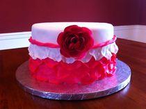 Adrianna s birthday cake cv