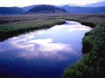 River cv