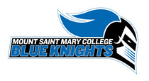 Mount saint mary college cv