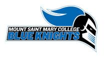 Mount saint mary college cv