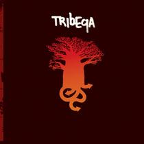 Tribeqa cv