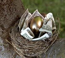 Nest egg1 cv