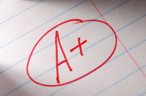 1026 grades460 cv
