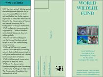 Brochure cv