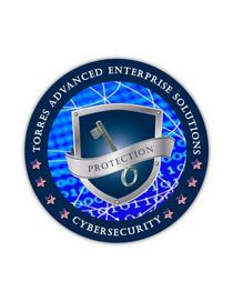 Cyber logo 01 cv