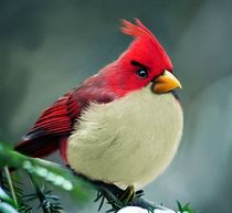 The real life angry birds looks awesome gizmokick 3 cv