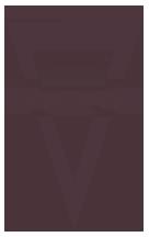 Ws logo small clear cv