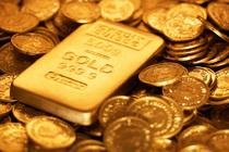 0831 gold 630x420 1358881868486 cv