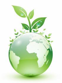 Sustainable cv