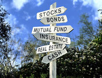 Investment portfolio cv