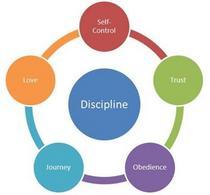 Discipline1 cv
