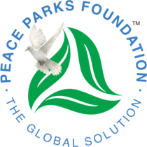 Peace parks foundation cv