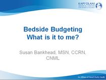 Budget cv