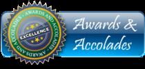 Awards and accolades cv