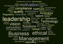 Word cloud cv