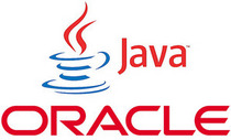 Oracle java 100026145 medium cv