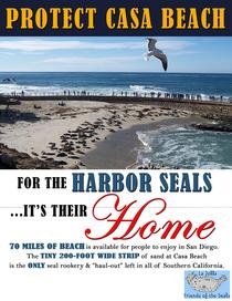 Protect casa beach final cv