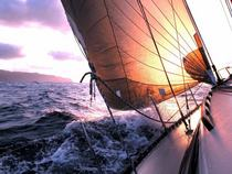 Sailing to the sunrise cv