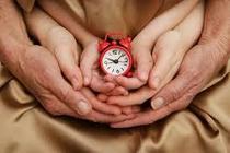 Punctual cv