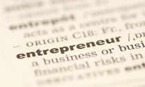 Entrepreneur cv