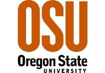 Oregon state university cv